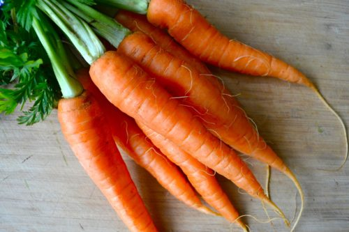 carrots-bunch