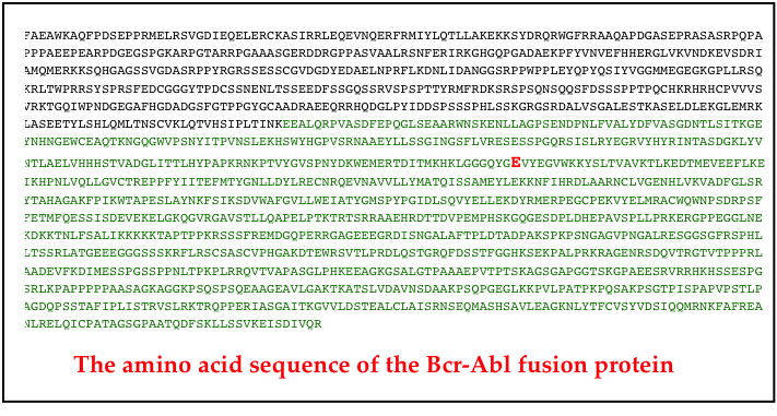 amino acid sequence bcr-abl