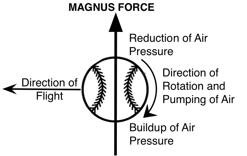 Magnus force pitched baseball