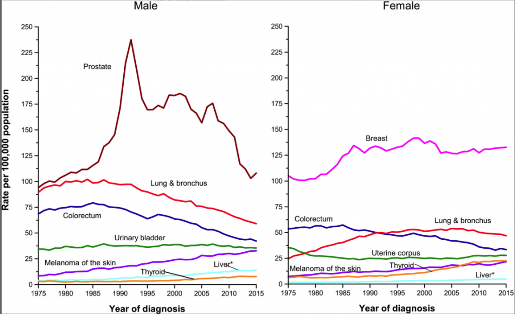 Cancer incidence rates in the USA